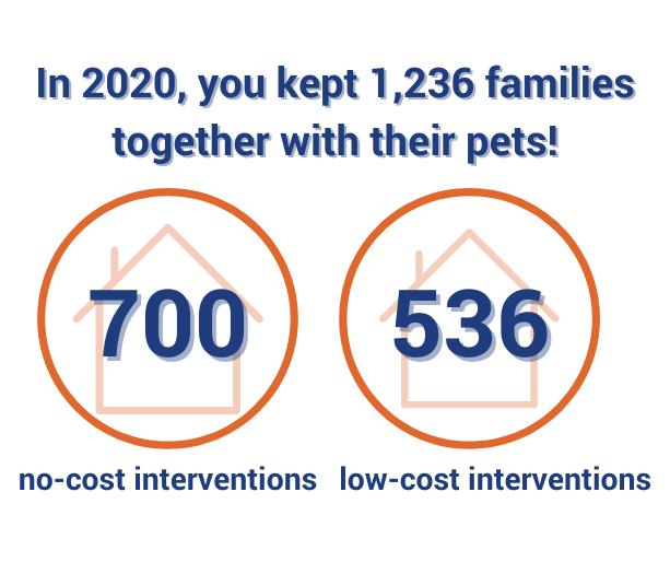 shelter intervention infographic