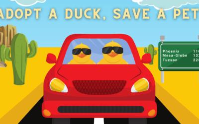 2021 Desert Duck Derby
