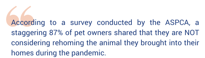 """Quote graphic that says """"according to a survey conducted by the ASPCA, a staggering 87% of pet owners shared that they are NOT considering rehoming the animal they brought into their homes during the pandemic."""""""