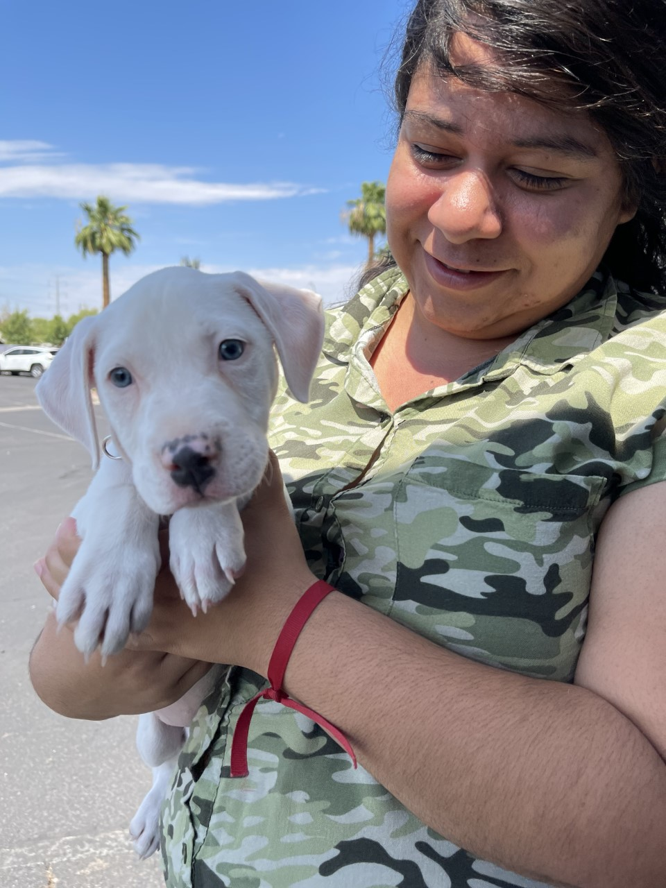 woman holding small white terrier mix